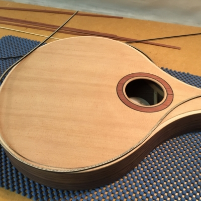 Stringed Instrument Workshop : <p>Paul C has been making an A-style mandolin.</p>