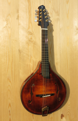 The f-hole Mandolin MVI