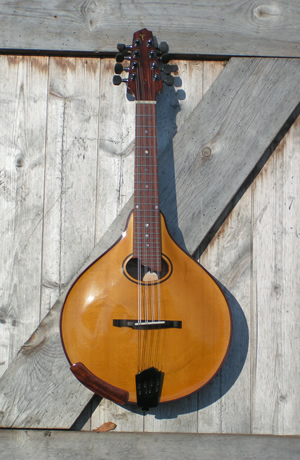 The central oval hole Mandolin MVI